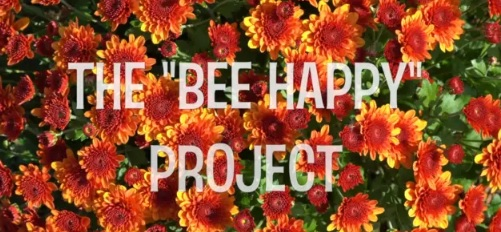 'Bee Happy' Expands Across New England